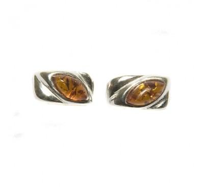 Baltic Amber Earning E2010