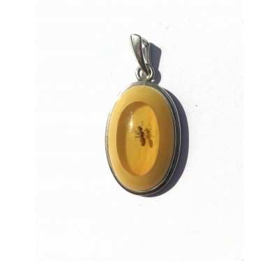 Baltic Amber & Sterling Silver Pendant